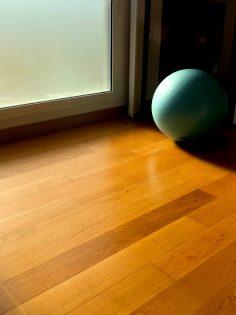 Strip Wax or Buff Hardwood Floors